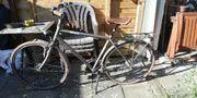 Brax Retro-Bikes von Panther 28