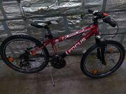 Focus Mountainbike 24