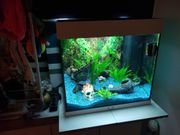 Aquarium juwel weiß
