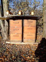 Zwei Bienenbeute DN
