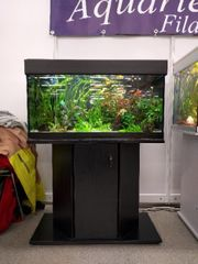 Aquarium 112L 80cm mit Unterschrank