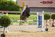 Eigenes Pferd RB für 4x