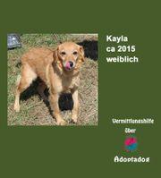 Kayla kann besucht werden