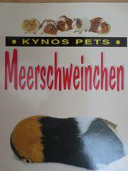Meerschweinchen Ratgeber von Kynos Pets