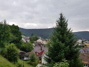3ZKB Wohnung in Titisee Neustadt