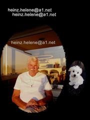 Hundepension Privat in Bregenz