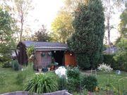 Suche Garten Kleingarten Erholungsgarten Pacht