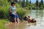 TiPSY- Kurzurlaub mit Hundeschule Seminar