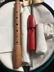 Flöte Mollenhauer Echtholz mit Plastikmundstück