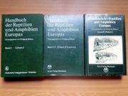 Großes Handbuch Reptilien 3 Bände