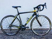 Rennrad Scott CR1