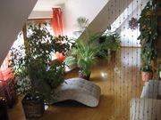 Helle schöne und ruhige Wohnung