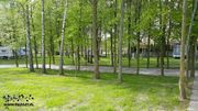 Ostsee Ferienhaus Camping