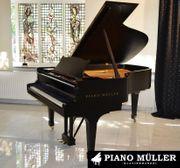 www piano-mueller de Klaviere und