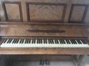 Klavier Wurzelholzfunier von