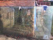 2 große Glasscheiben für Vordach