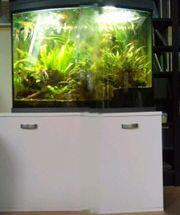 Aquarium 130 Liter