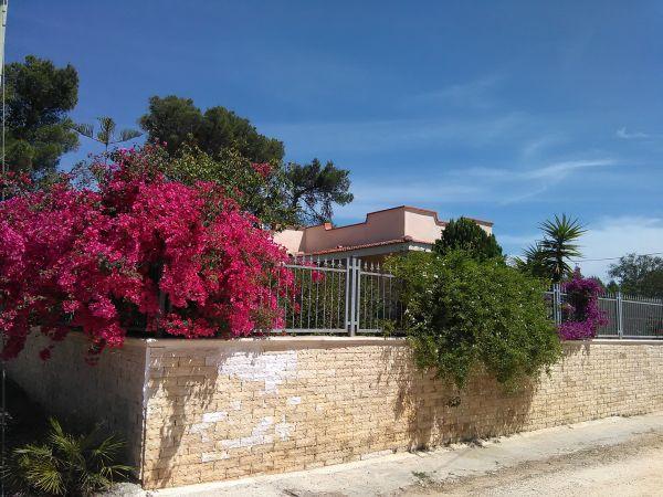 Süditalien /Apulien/ Ferienhaus » Ferienhäuser, - wohnungen