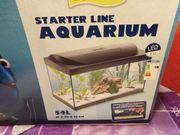 Aquarium Einsteiger Set von Tetra