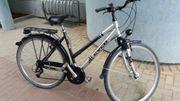 Damen -Herrn Fahrrad