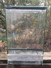 Terrarium für Insekten oder Spinnen