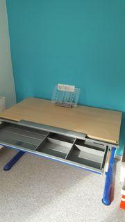Schreibtisch Moll mit Anbaufläche0