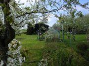 Idylischer Garten im