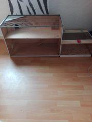 Terrarium für Hamster