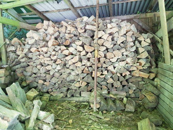 Brennholz Buche getrocknet 30 Ster - Hirschberg - Verkaufe Brennholz Buche aus Nachlass. Holz ist getrocknet und kaminfertig. Es sind ca. 30 Ster da. Verkauf im Ganzen oder auch in kleineren Mengen. 60EUR/SterBei größerer Abnahme Preisnachlass möglich.Für Selbstabholer. Abholung in Bamme - Hirschberg