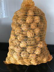 Nüsse aus unserem Garten