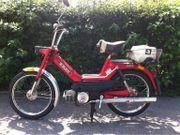 Suche günstiges Moped