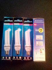 12 Volt Energiesparlampen E27