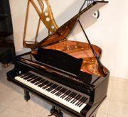Klaviere, Flügel - vom