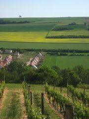 Neustadt Weinstr Ruhiges Paar sucht
