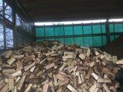 Brennholz Buche trocken