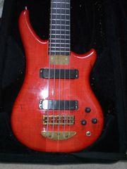 Alembic Essence 5-Saiter Bass Bj