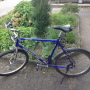 Wheeler 1800, Mountainbike,