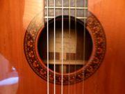 TAKAMINE Konzertgitarre DC 125 S