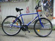 Trekking - Fahrrad von RADIANT mit