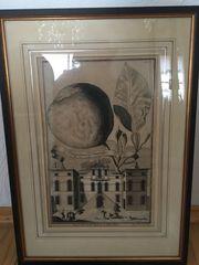 Original Kupferstich aus Nürnbergische Hesperides