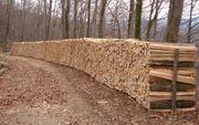 Suche trockenes Meterholz