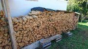 Brennholz Feuerholz Kaminholz Robinie gespalten
