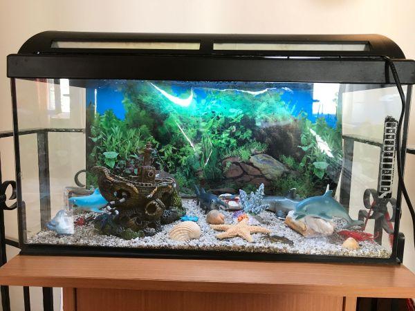 aquarium marina kleinanzeigen kaufen verkaufen bei deinetierwelt. Black Bedroom Furniture Sets. Home Design Ideas