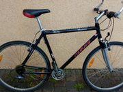 Trekking Fahrrad 28