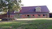 Pferde - Stellplatz