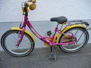 PEGASUS Teddy Kinderrad 18 guter