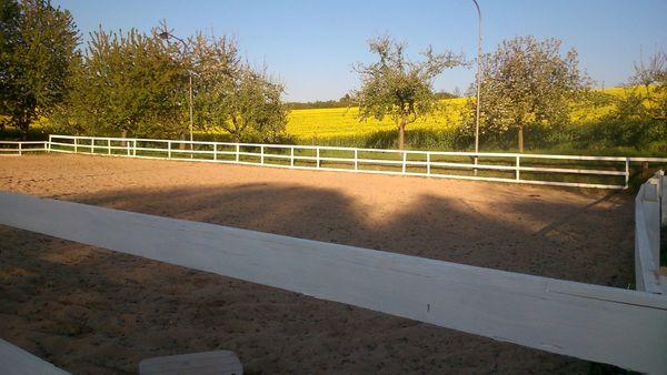 Pferdpension - Paddock- Weide- große helle