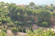 AUSWANDERN - Marbella - Traumfinca - Pferde - Ranch -