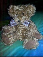 Teddy Bär Teddybär