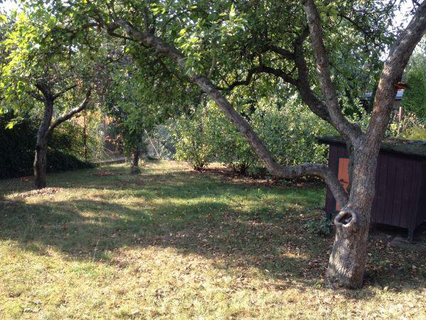 Gartenparzelle mit Holzhaus » Schrebergärten, Wochenendhäuser